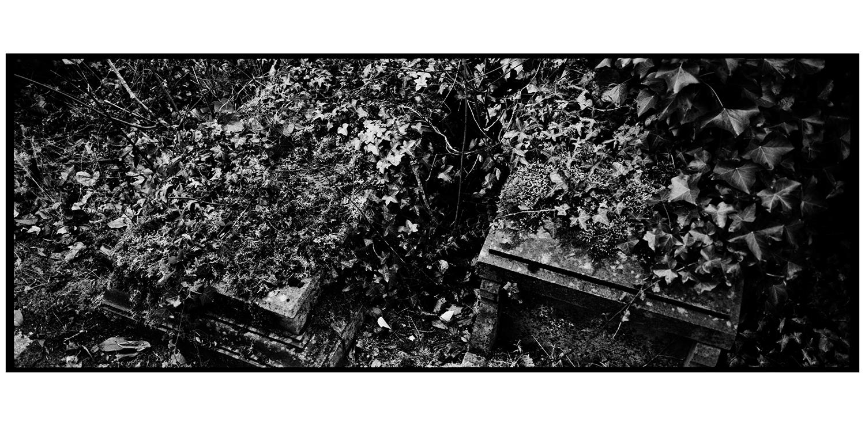 Dieweg Cemetery by Laurent Orseau #38