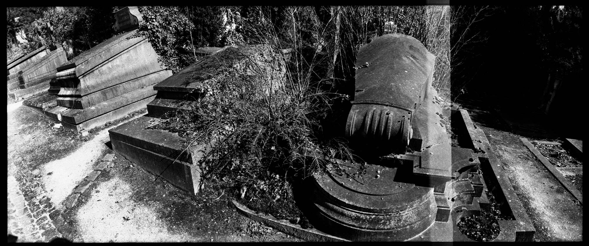 Dieweg Cemetery by Laurent Orseau #42