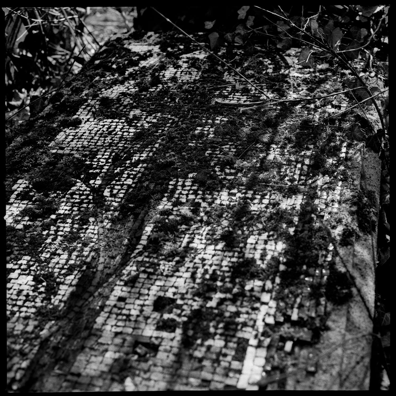 Dieweg Cemetery by Laurent Orseau #52