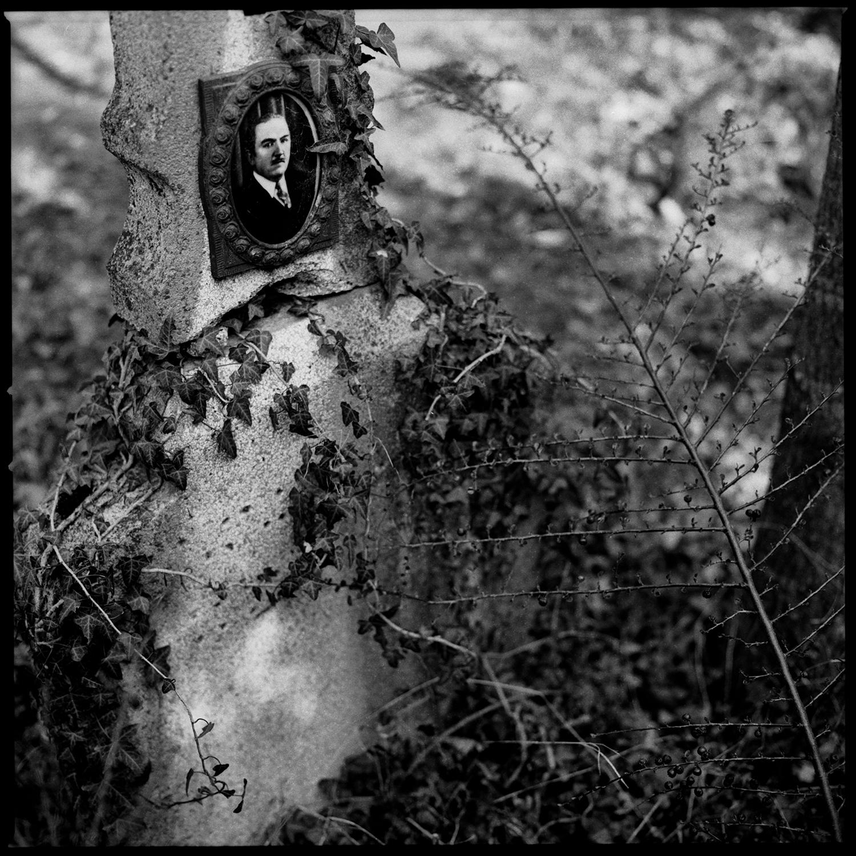 Dieweg Cemetery by Laurent Orseau #54
