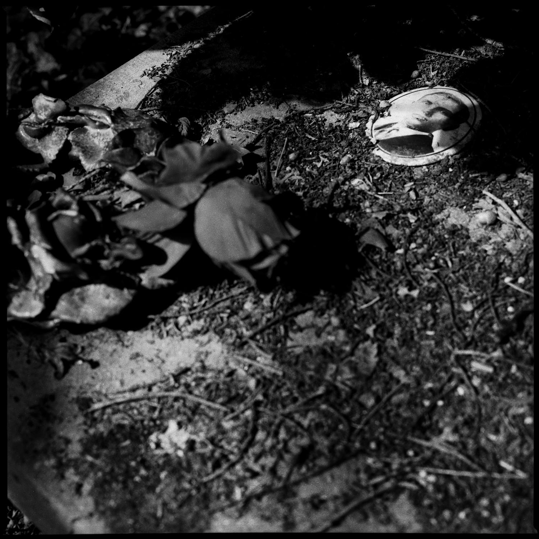 Dieweg Cemetery by Laurent Orseau #55