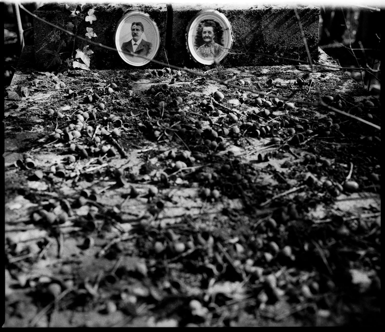 Dieweg Cemetery by Laurent Orseau #56