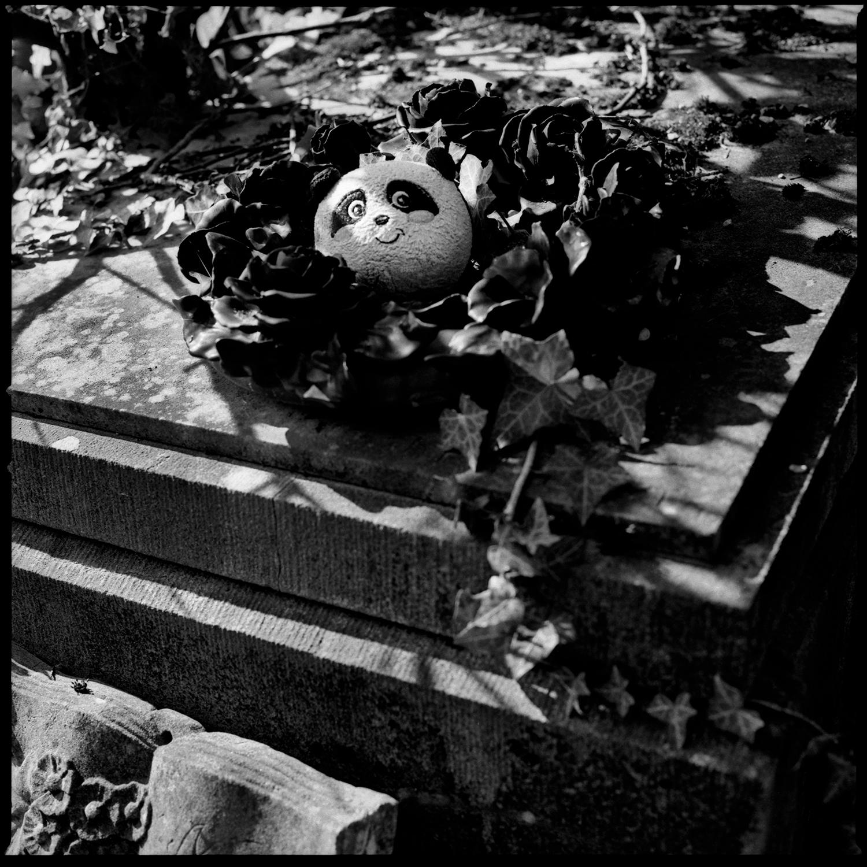 Dieweg Cemetery by Laurent Orseau #57