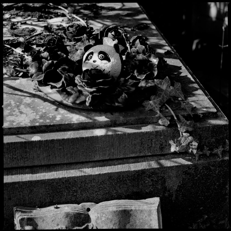 Dieweg Cemetery by Laurent Orseau #58