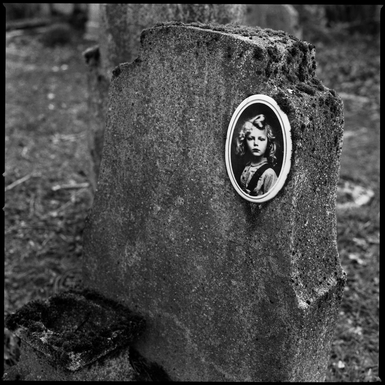 Dieweg Cemetery by Laurent Orseau #61