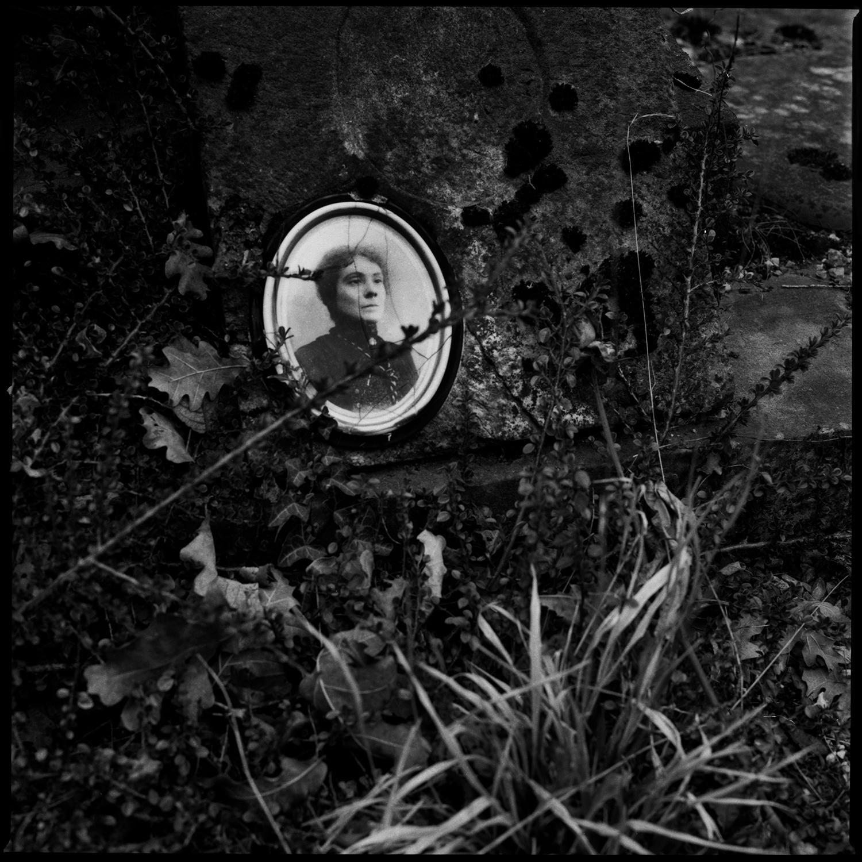 Dieweg Cemetery by Laurent Orseau #63