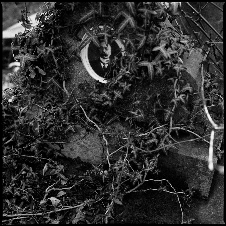 Dieweg Cemetery by Laurent Orseau #64