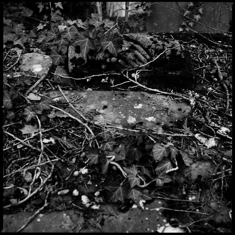 Dieweg Cemetery by Laurent Orseau #67