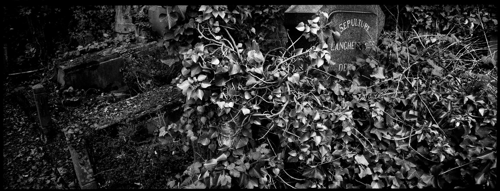 Dieweg Cemetery by Laurent Orseau #71