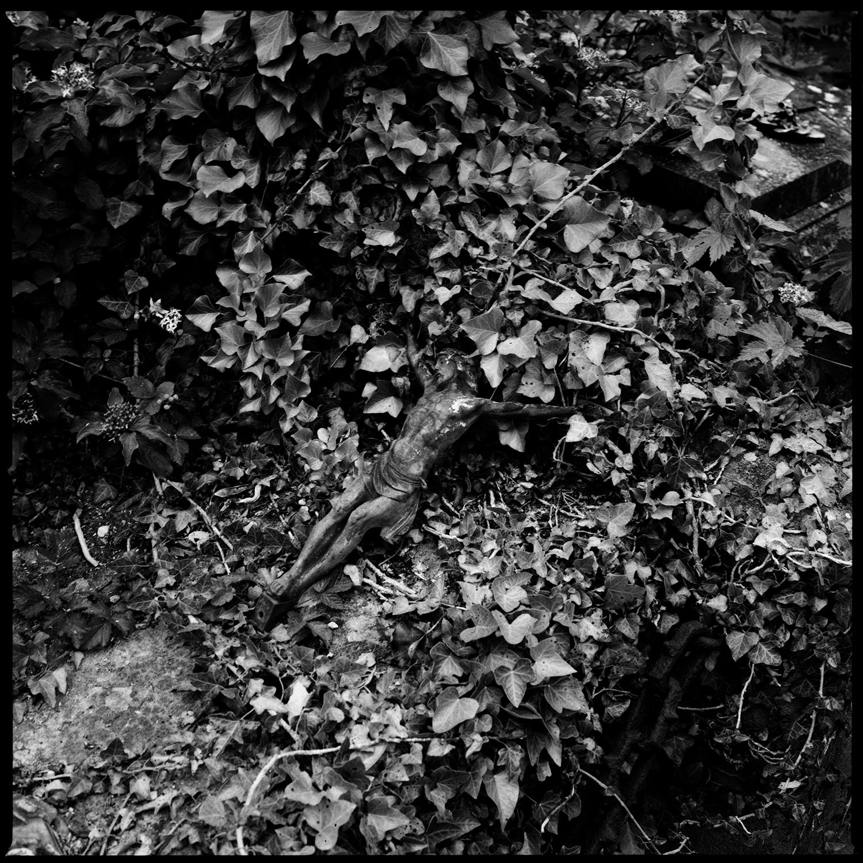 Dieweg Cemetery by Laurent Orseau #80