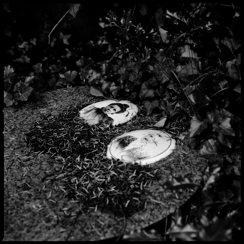 Dieweg Cemetery by Laurent Orseau #83