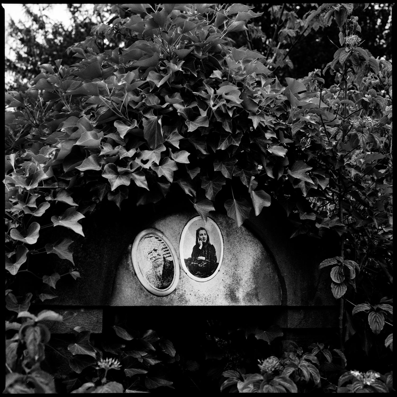 Dieweg Cemetery by Laurent Orseau #84