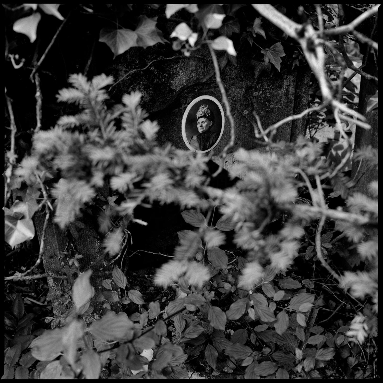 Dieweg Cemetery by Laurent Orseau #85