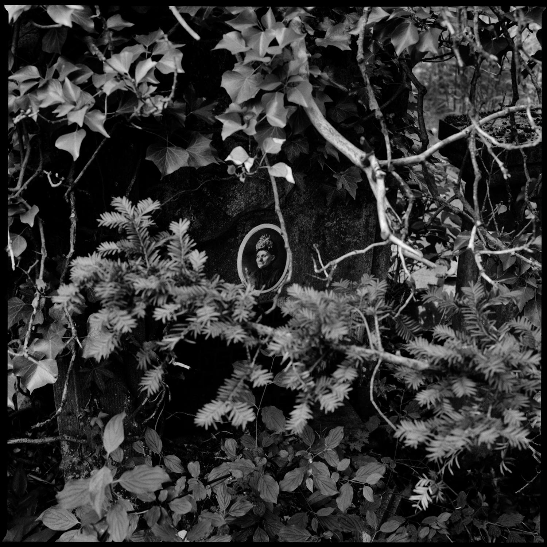 Dieweg Cemetery by Laurent Orseau #86