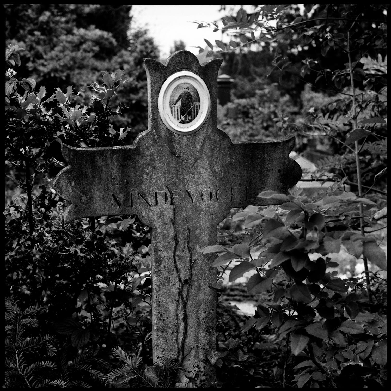 Dieweg Cemetery by Laurent Orseau #87