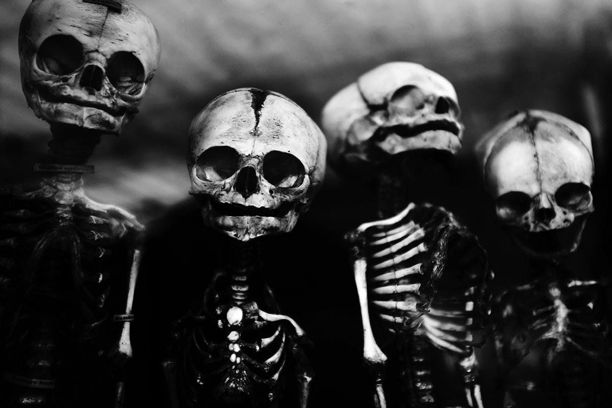 Foetal Skeletons by Laurent Orseau #11