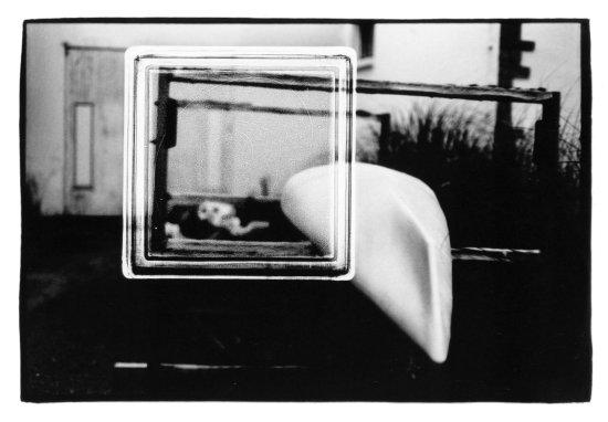 Miscellaneous by Laurent Orseau #22