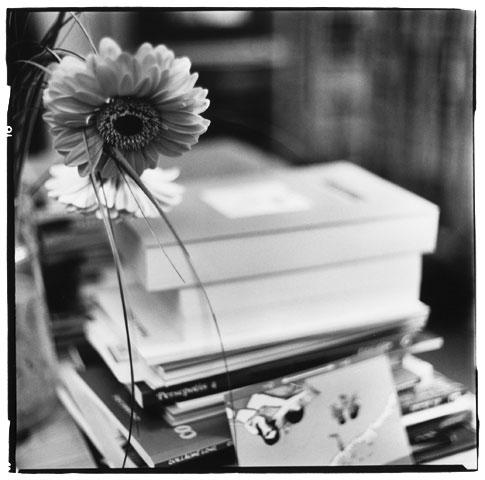 Trees, Plants, Flowers... by Laurent Orseau #14