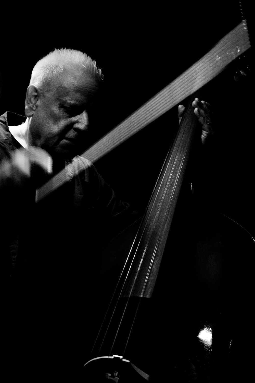 Arnold Dreyblatt & The Orchestra of Excited Strings by Laurent Orseau - Les Ateliers Claus - Brussels, Belgium #11