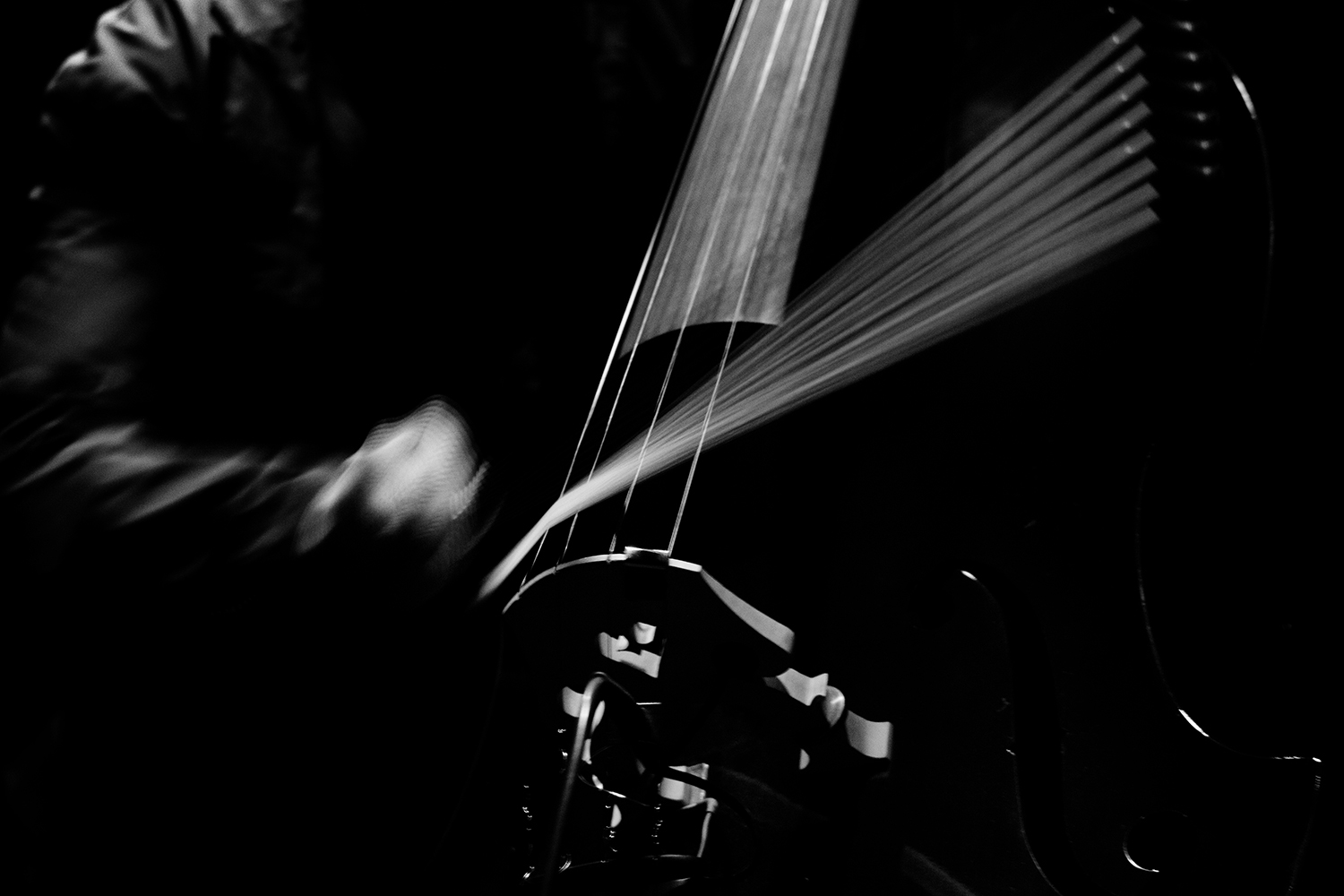 Arnold Dreyblatt & The Orchestra of Excited Strings by Laurent Orseau - Les Ateliers Claus - Brussels, Belgium #13