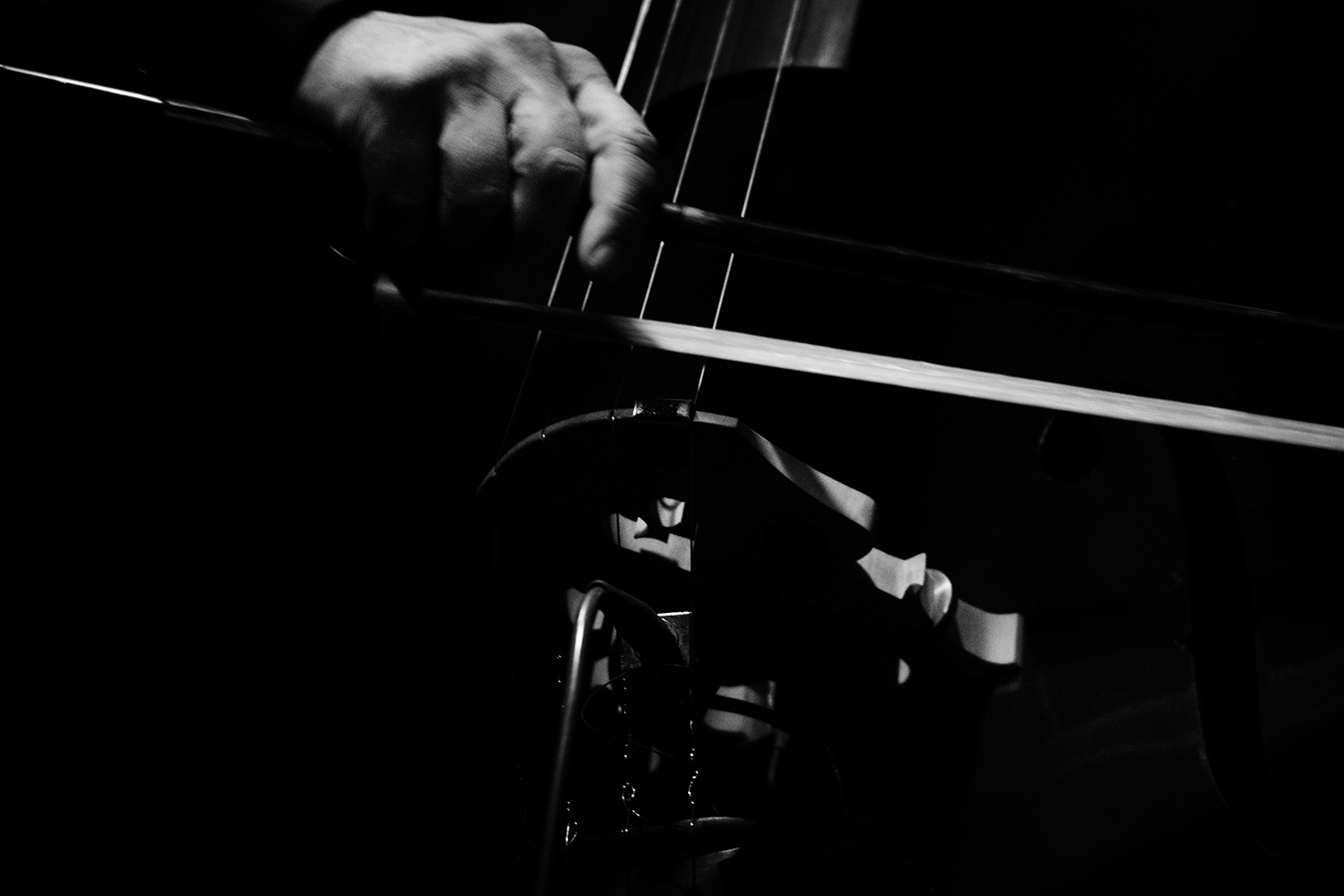 Arnold Dreyblatt & The Orchestra of Excited Strings by Laurent Orseau - Les Ateliers Claus - Brussels, Belgium #14